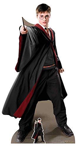 Harry Potter - Quidditch Captain - Lebensgroßer Pappaufsteller Standy - Größe 88x170cm