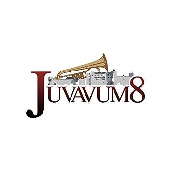 Juvavum 8