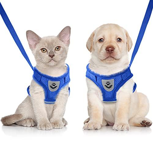 Sumind Set di Imbracatura e Guinzaglio per Gatto/Cucciolo Imbracature Gilet Regolabili in Morbida Rete Antifuga Cinghia Pettorale a Rete Traspirante per Cani Gatti Animali Domestici, XS (Blu)