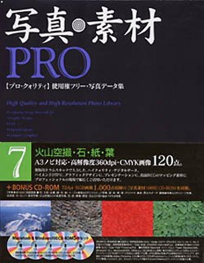 シロクマ恥ずかしい横向き写真素材Pro Vol.7 火山空撮?石?紙?葉