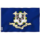 Anley Fly Breeze 3x5 Foot Connecticut State Polyester Flag - Vivid Color and UV Fade Resistant - Canvas Header and Double Stitched - Connecticut CT Flags with Brass Grommets 3 X 5 Ft