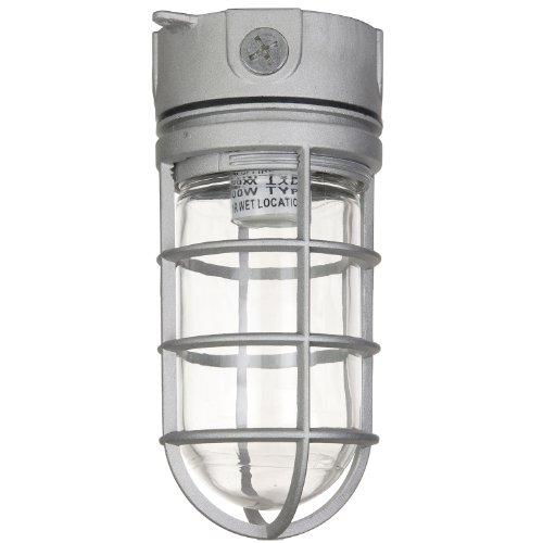 Sunlite 04900-SU Vaporproof Industrial Fixture, Ceiling Mount, Medium Base Socket (E26), 100W Max, 120 Volt, Outdoor, UL Listed, Clear Glass Jar, Metallic Finish