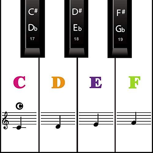 Klavier Keyboard Aufkleber für 54/61 / 76/88 Tasten Noten Piano Sticker für weiße & schwarze Tasten Transparent und abnehmbar (Farbe)