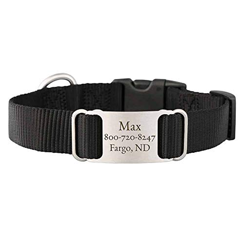 dogIDs Personalized Black Nylon ScruffTag Dog Collar - Custom Laser Engraved Nameplate - 1 inch Wide, Fits 13 - 18 in Neck