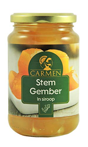 Ingwer in Sirup Ginger in Syrup 450g / 240g ATG Gember
