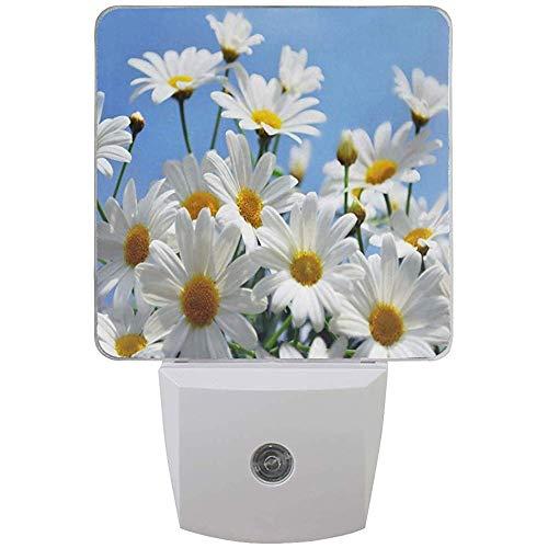 Katrine Store Night Light Flower Referencias en Pinterest Auto Senor Dusk to Dawn Lámpara de luz LED para Pasillo, Cocina, baño, Dormitorio, escaleras