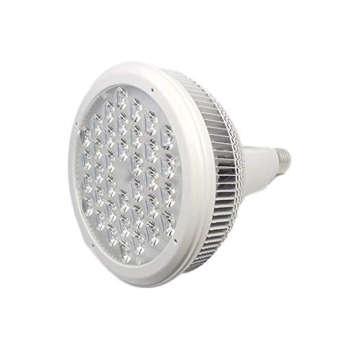 Kas Bloem Kwekerij Succulente Volledige Spectrum LED Plant Groei Vul Licht 68W Natural light