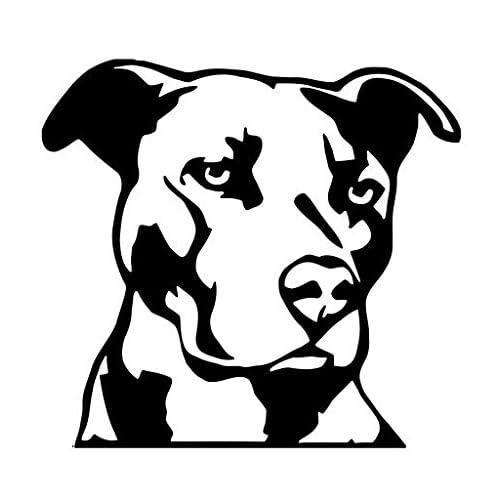 Amazon Com Js Artworks Pitbull Head Dog Animal Pet American Pit