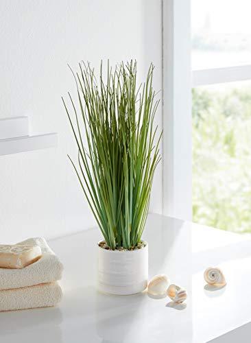 Dekoleidenschaft Kunstgras, 30 cm hoch, im weißen Porzellantopf, Kunstpflanze, Büropflanze