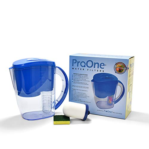 Propur ProOne Water Filter Pitcher with Fruit Infuser. Includes 1 ProOne G2.0 M Filter Element.