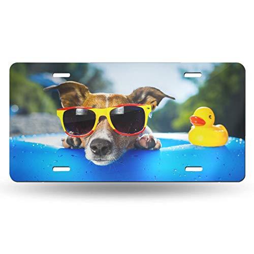 Placa de matrícula para perro con gafas de sol decorativa para coche, placa de vanidad, placa de metal para coche, placa de aluminio para hombres, mujeres, niños y niñas, 15,2 x 12 pulgadas