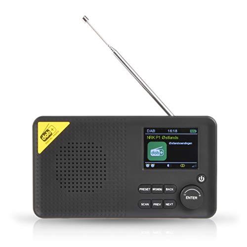 Y-POWER Recargable portátil inalámbrico Bluetooth Radio digital DAB/DAB+y receptor FM Home Radio reproductor de música
