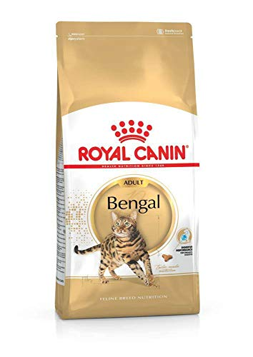 ROYAL CANIN Bengal Adult, 1er Pack (1 x 2 kg)