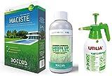 Maciste, Sementi per tappeto erboso ideale per zone aride 1Kg + Green Up Lt 1 Rinverdente Acidificante Antimuschio per Tappeti Erbosi Bottos con Pompa Spruzzatore a Pressione 2L