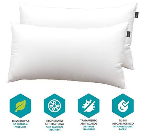 DHestia Hostelería - Almohada Núcleo de Fibra Hueca Siliconada y Funda de 100% Microfibra (Pack 2 uds 75 cm)