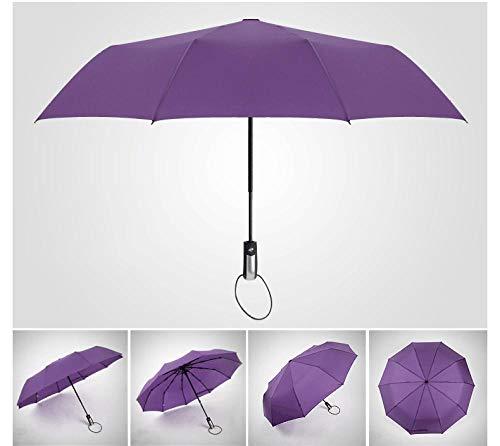 FPXNBONE Automatik Regenschirm Herren Damen,10K Vollautomatikschirm, verstärkter Faltwindschirm-lila,kompakter Taschenschirm