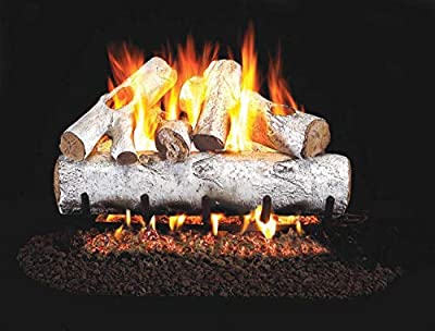 RealFyre White Birch Vented Gas Logs (W-24), 24-Inch