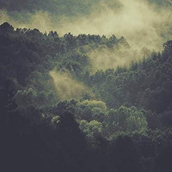 Nature Sounds (Relaxing Rainforest)