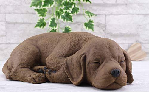 Steinfiguren Spicker Steinfigur Hund schlafend 191/2, Gartenfigur Steinguss Tierfigur Braun Patina