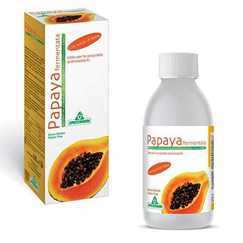 Fermentierte Papaya 500ml