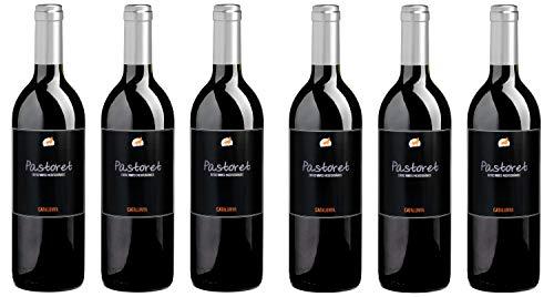 Bio Wein Rotwein Halbtrocken Cuvée Merlot Garnacha Syrah Spanien Katalonien 2016 Barrique Vegan Histaminarm Säurearm (6 x 0.75l)