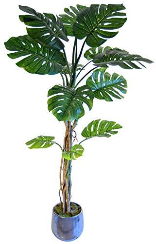 Philodendron Artificial, Ideal para Decoración de Hogar, Planta Artificial, Árbol (180 cm)