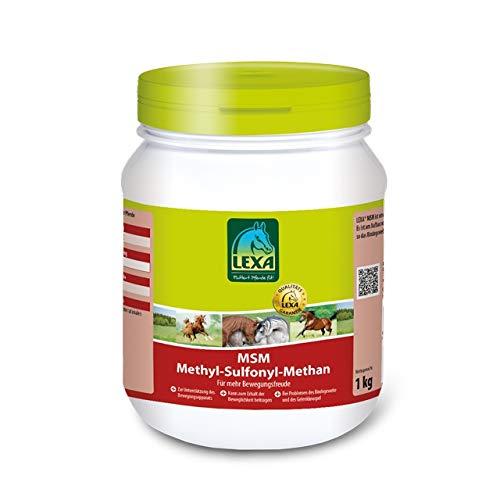 MSM (Methyl-Sulfonyl-Methan)-1 kg Dose