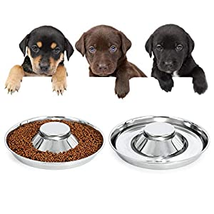 KASBAH Stainless Steel Dog Bowls for Puppy, 2 Pack Puppy Feeder Bowl for Feeding Food and Water Weaning Pet Feeder Bowl Water Bowl for Small Dogs/Cats/Pets (S, A-Sliver)