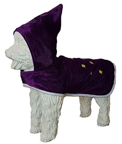 Halloween Wizard Dog Costume (Chest -12 ins)