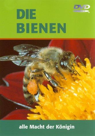 Die Bienen - Alle Macht der Königin