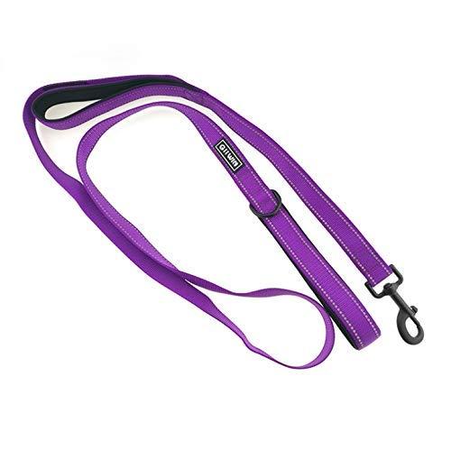 Retractable tow rope Multifunción correa correa de nylon Material de buceo Longitud Doble PET Pull Rope Ajustable Mano Tracción Cuerda, Negro, Púrpura, Rosa, 2.5 x 180cm Cuerda para mascotas (Color: P