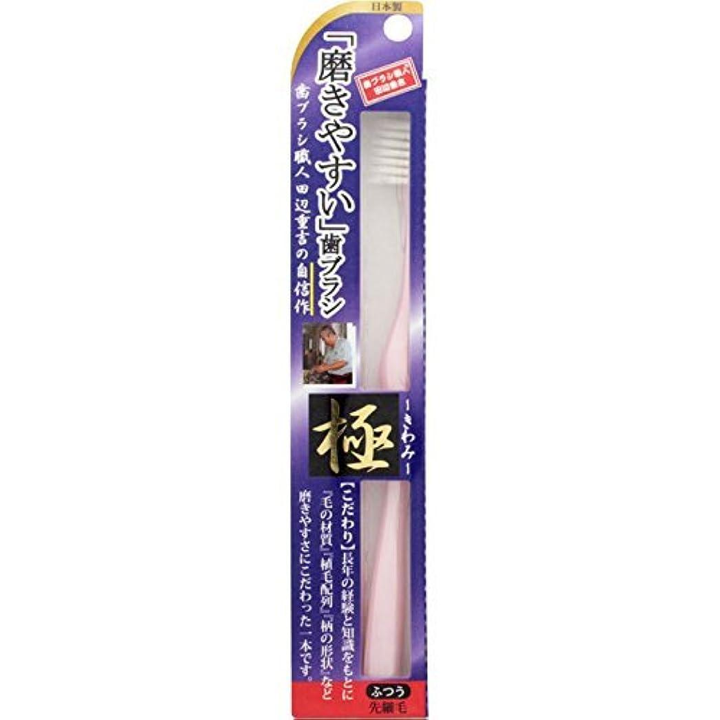 半ば研磨タイト【まとめ買い】磨きやすい歯ブラシ 極 LT22 ×3個