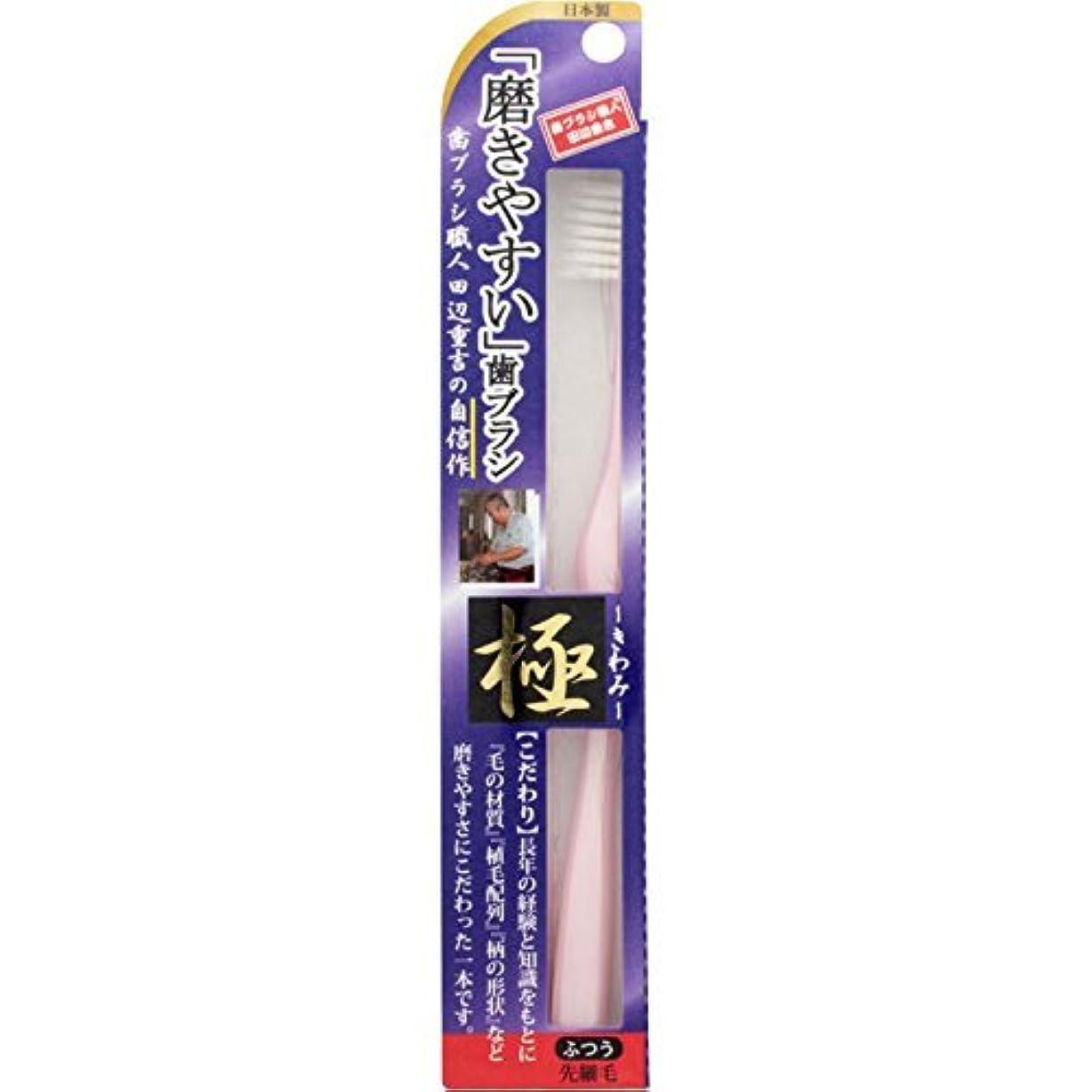 不屈論理的に反発する【まとめ買い】磨きやすい歯ブラシ 極 LT-22 ×2個