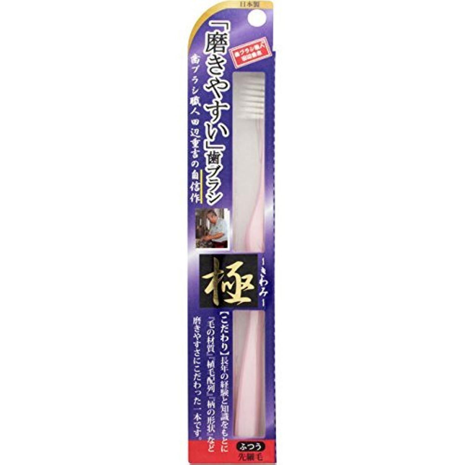 格納手つかずの事業内容【まとめ買い】磨きやすい歯ブラシ 極 LT22 ×6個