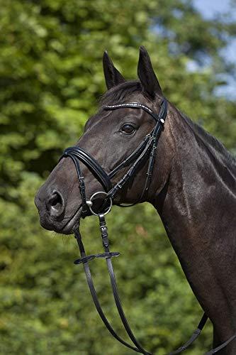 Horse&Passion 920024/11423 Leonis Cabezada de Montar, Negro, Cristales de Colores, Claro, Talla única