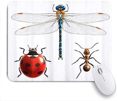 Benutzerdefiniertes Büro Mauspad,Libelle Marienkäfer Ameise bunt lustig,Anti-slip Rubber Base Gaming Mouse Pad Mat