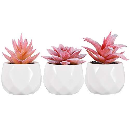 Zalava Künstliche Sukkulenten Pflanzen, 3 Stück Künstliche Pflanzen mit Topf Kunstpflanze klein für Tisch Haus Balkon Büro Deko