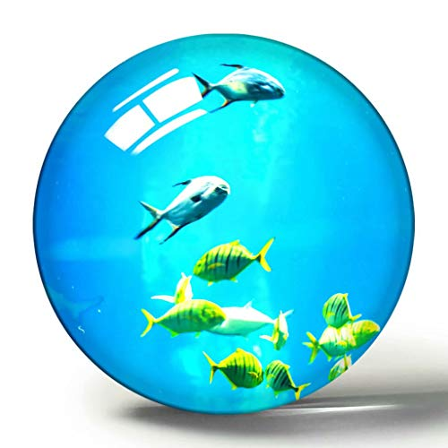 Usa America Aquarium Baltimore 3D Kühlschrank Magnet Souvenir Collection Reise Geschenk Kreis Kristall Kühlschrank Magnete