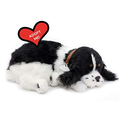 Product Image of the Perfect Petzzz Puppy