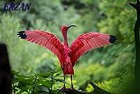 ERZAN500ピースのジグソーパズルピンクの鳥大人の子供のための木製パズル