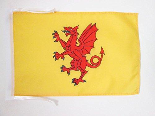 AZ FLAG Flagge GRAFSCHAFT Somerset 45x30cm mit Kordel - Somerset Fahne 30 x 45 cm - flaggen Top Qualität