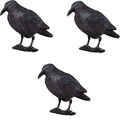 ARTECSIS 3 x Kunststoff-Rabe zur Taubenabwehr mit Stock und Füßen, Taubenschreck, Lockvogel für die Jagd