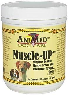 Animed Muscleup Powder (16oz)_LQ
