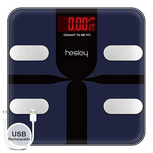Hesley Inc Premium Smart Bluetooth Body Fat Scale, BMI Scale...