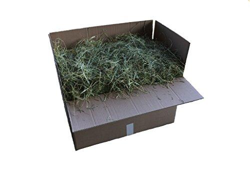 heukorb.de Heu Timtohy - der grobe Knabberspaß für Kaninchen & Meerschweinchen (10-12kg)