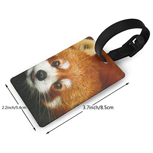 Etiqueta Para Equipaje Panda  marca GooDone