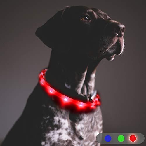Toozey LED Leuchthalsband Hund - Dauerlicht für 20 Stunden - USB wiederaufladbar Längenverstellbar Nacht-Sicherheit Hundehalsband für Hunde und Katze, 3 Modus, Rot