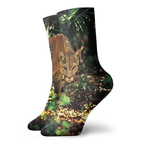 Lsjuee Pumas In Jungles Divertido Novedad Unisex Arte Estampado Fibra de poliéster Transpirable Cómodo Calcetines duraderos