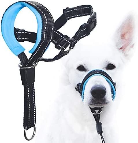 GoodBoy Dog Head Halter with Safety Strap Stops Heavy Pulling On The Leash Padded Headcollar product image