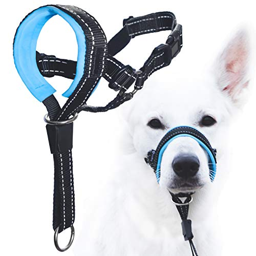 Best Dog Head Halter
